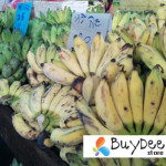 cultivated banana in paknam fresh market