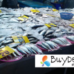 fish in paknam fresh market
