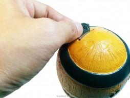 Coconut Resin Piggy Bank
